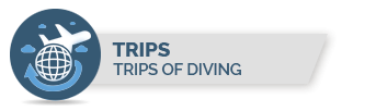 TRIPS OF DIVING